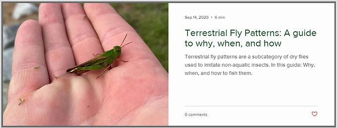 terrestrial-grasshopper-fly-fishing.jpg