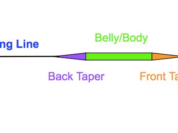 Understanding Fly Line Tapers: An Illustrated Guide
