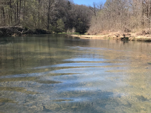 Fly Fishing: The Fourth Dimension