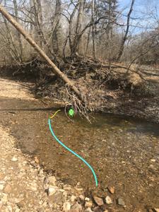 trout-stream-reach-cast