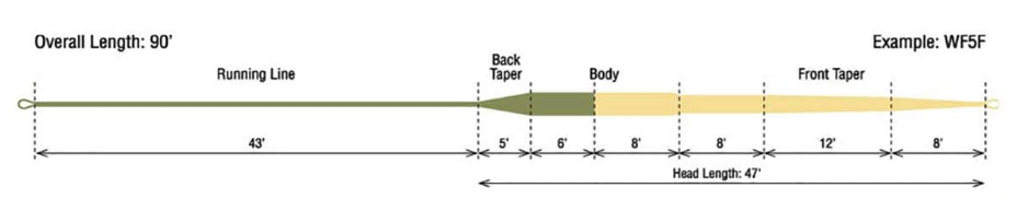 rio trout fly lt fly line taper diagram