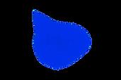 bleu_4.png