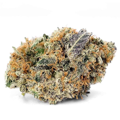 GIRL SCOUT COOKIES 1g