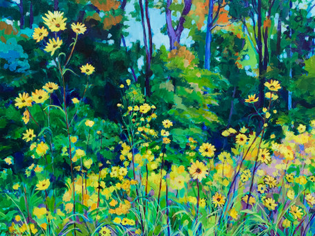 Natural Beauty Solo Show at the Norfolk Botanical Garden