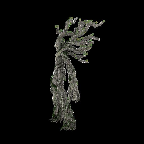 Treefolk.H04.2k.png