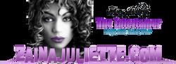 Zaina+Logo+4+site+purple7-C.png