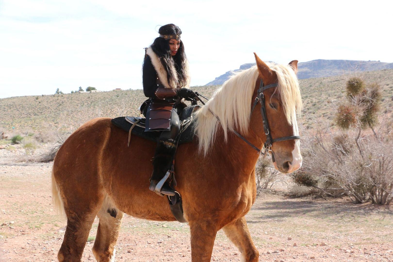 Z warrior horse.jpg
