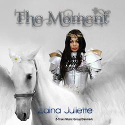 Moment CD Cover Danmark