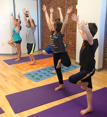 Private and Small Group Yoga Sessions