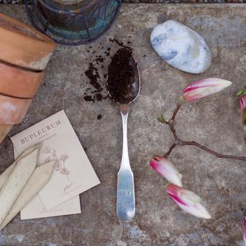 ONE ROOM CHALLENGE, WEEK 1 | Creating A Backyard Flower Studio
