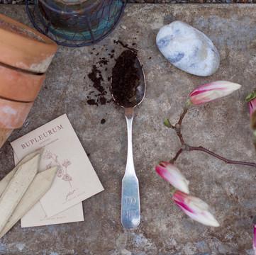 ONE ROOM CHALLENGE, WEEK 1   Creating A Backyard Flower Studio