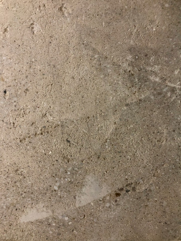 Polished Concrete Floors, Bath And Laundry Room Reno  ORC, FALL 2020, WEEK 5
