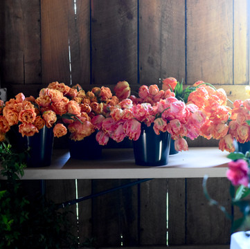 How To Plant Spring Bulbs Like A Flower Farmer