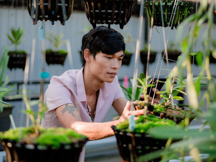 Hạc Hoàng Huy, đi từ nghèo khó, thành công từ trồng hoa lan