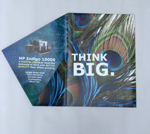 Wide Format Peacock Themed Print Marketing Campaign (2)