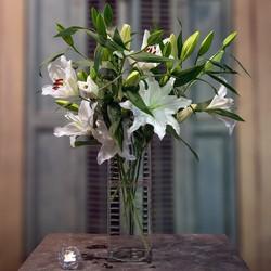 white-lillies