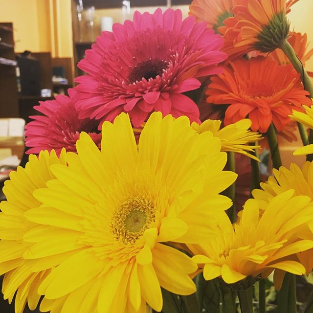 People often ask what color flowers we h