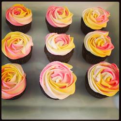 Multi Rose Cupcakes