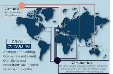Impact Consulting Infographic