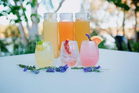 Clovendoe - Botanic Distillied Spirits-2