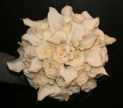 white 12
