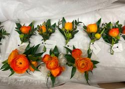 orange ranunculus cluster