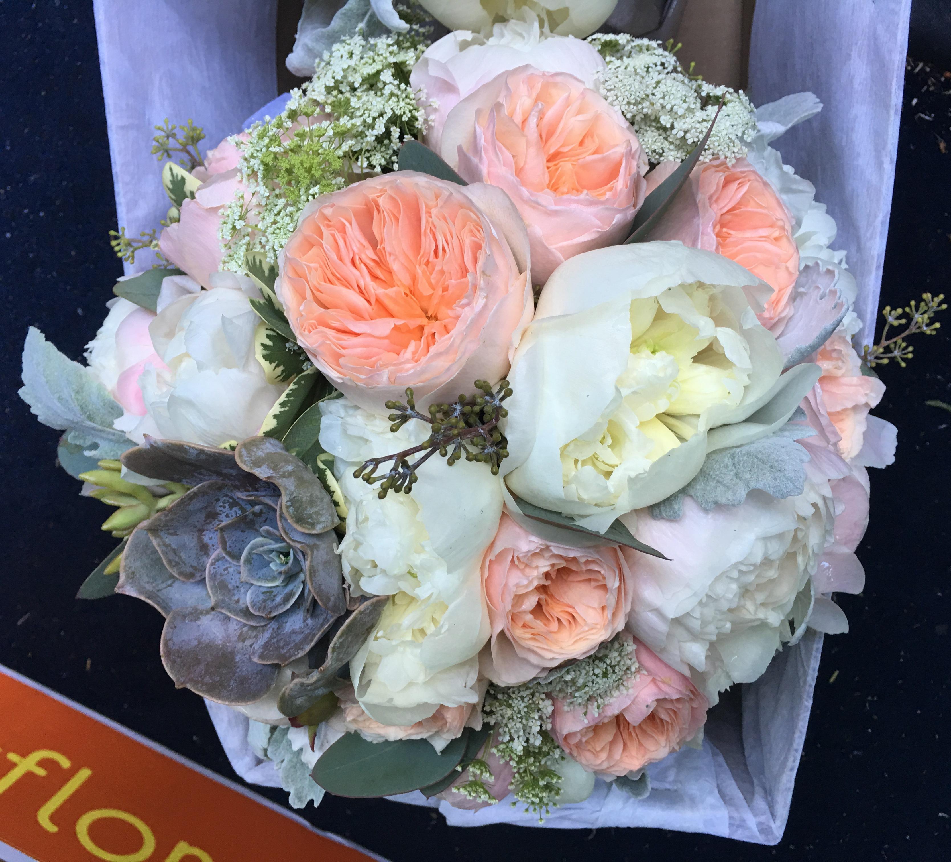 garden roses peonies succulent