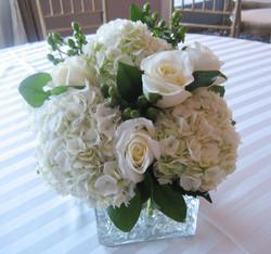 Hydrangea & Roses Spinelli's (9)
