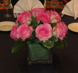 Roses Marriott