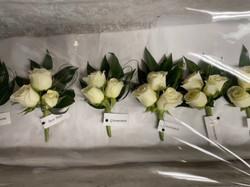 white spray rose cluster