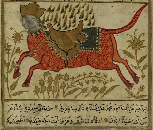 Turkish Version of the Wonders of Creati