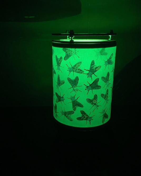Nightlight - green globe illumination.