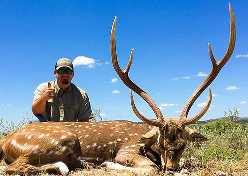 Hunter with chital deer