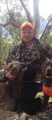 hunting sambar deer with pointer