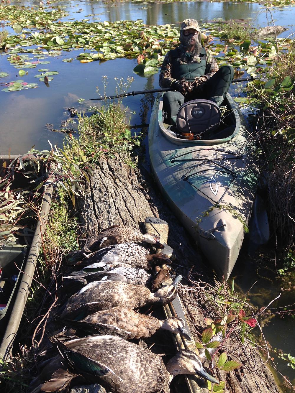 Duck hunting Australia