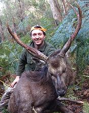 Guided samber deer hunting