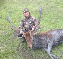 Red deer hunting sa