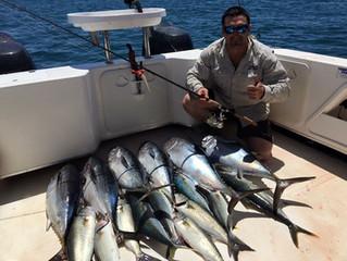 Coastal fishing at its best.