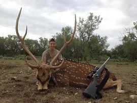 monster chital deer trophy