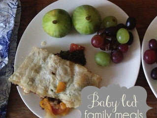 Baby Led Family Meal Ideas