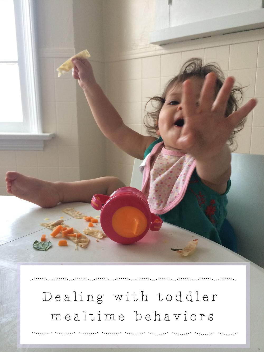 Toddler_Mealtime_Behaviors.jpg