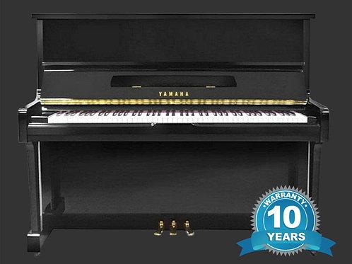 Yamaha Piano U10BL