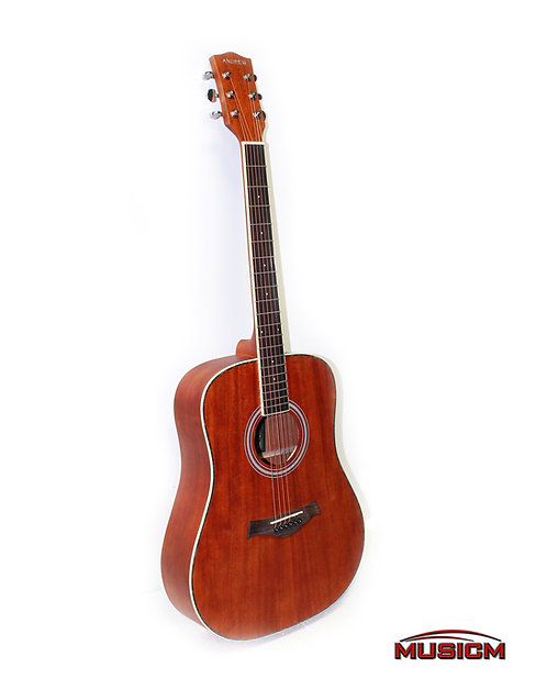LT-4160Y Acoustic Guitar