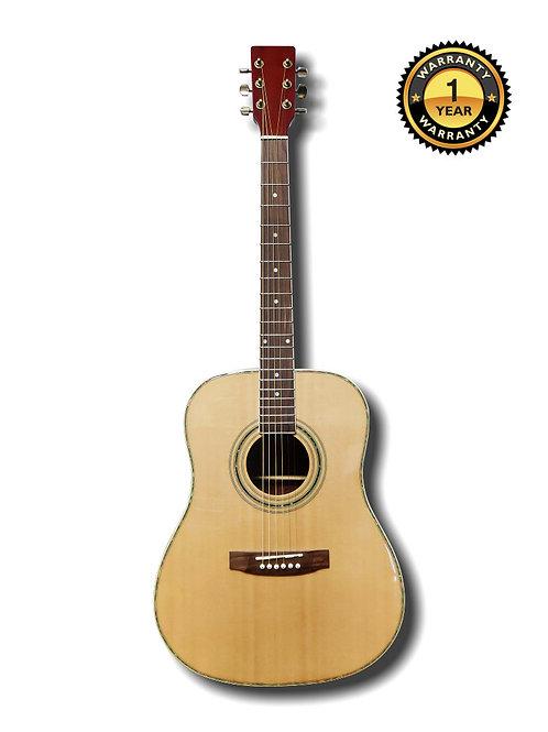 Acoustic Guitar 4193N