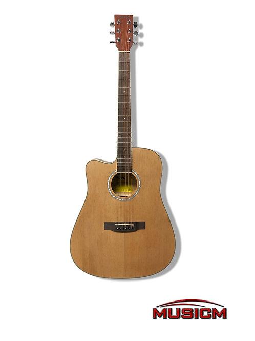Gipsy Lefty Acoustic Guitar (C41DNA)