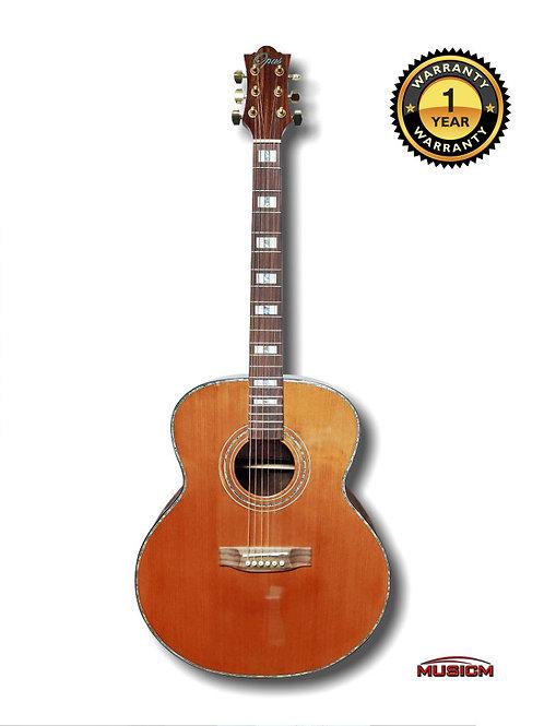 Fenix Acoustic Guitar FG-180DS