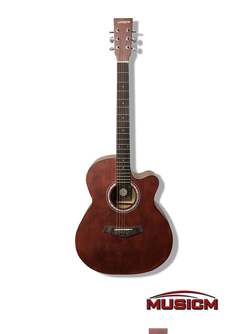 Andrew Acoustic Guitar (LT-4014K)