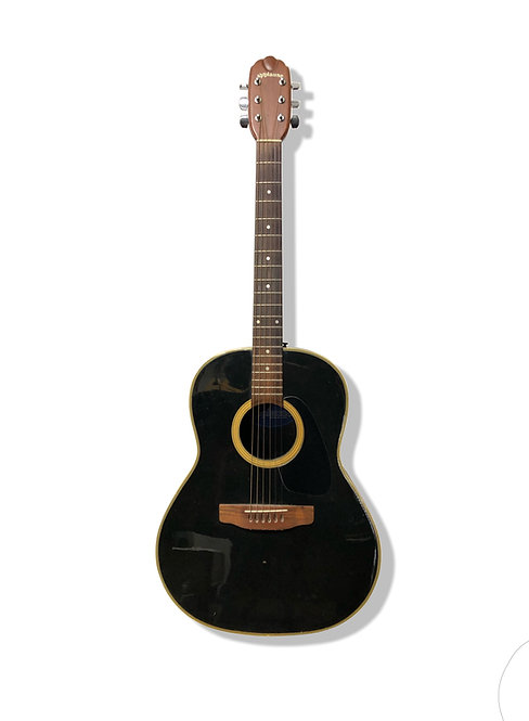 AA-31 Acoustic Guitar