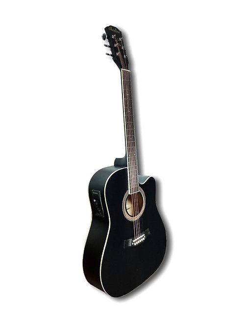 LT-4100NPEQ Acoustic Electric Guitar