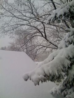 South Bend Winter Apocolypse
